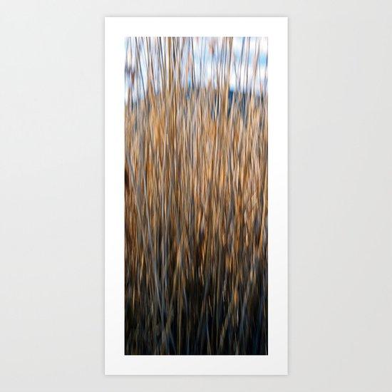 Moving reeds Art Print