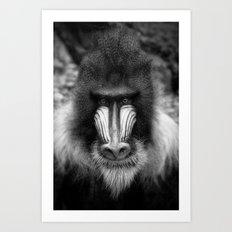 King Monkey Art Print