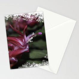 Christmas Cactus Stationery Cards