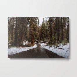 Tunnel Log Road in Sequoia Metal Print