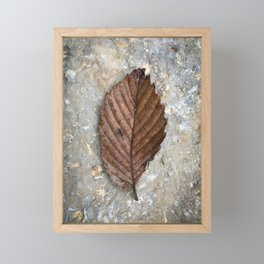 Elm Leaf Framed Mini Art Print