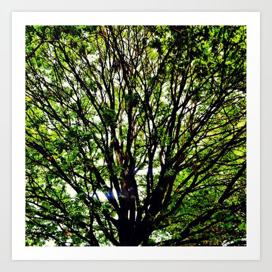 Leaves and Branches 3 Art Print