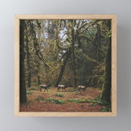 Rainforest Elk Framed Mini Art Print
