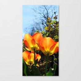 Yellow and Orange #1 Canvas Print