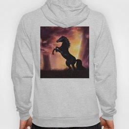 Rearing black horse at sunset Hoody