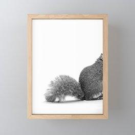 nuts Framed Mini Art Print