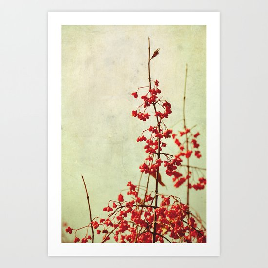 autumn berries Art Print