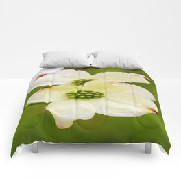 March of the Dogwood Comforters