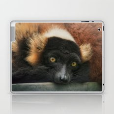 Do YOU know what a Lemur thinks....? Laptop & iPad Skin