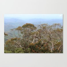 Australiana No. 3 Canvas Print