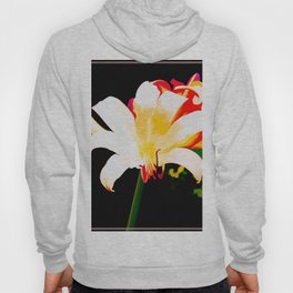 Song Of The Lilies Hoody