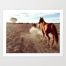 Stock Horses Art Print