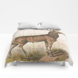 Vintage Illustration of a Round Horned Elk (1872) Comforters