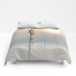 Late Summer Sun Comforters