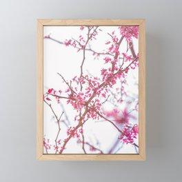 Nature photography pink blossom III Framed Mini Art Print