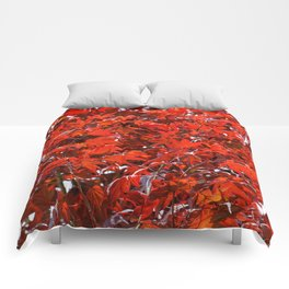 Japanese Red Maple Leaves Comforters