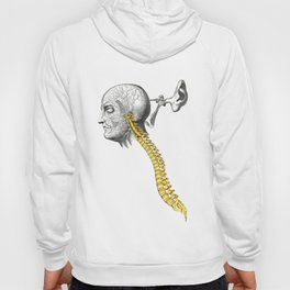 spinal column Hoody