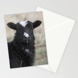Here's Looking at You Kid Stationery Cards