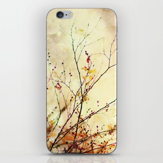 Autumnal Bliss  iPhone & iPod Skin