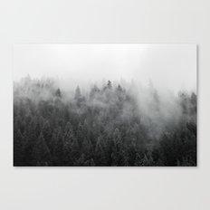Black and White Mist Canvas Print