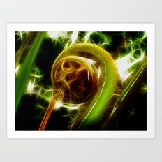 The Unfurled Fern Art Print