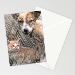 Papua New Guinea Puppy And Kitten In Bamboo Hut Stationery Cards