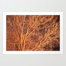 Tree @ Night Art Print
