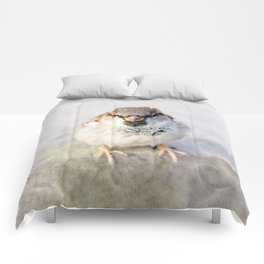 Don't Mess With Sparrows Comforters