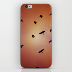 Art Of Flight #2 iPhone & iPod Skin