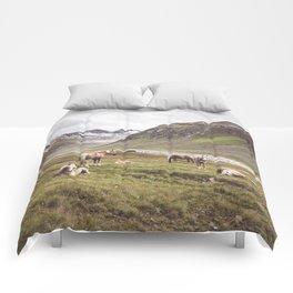 Tyrolean Haflinger horses I Comforters
