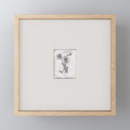 Daisy / creme Framed Mini Art Print
