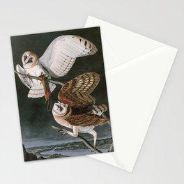 Barn Owls, the Birds of America by John James Audubon Stationery Cards