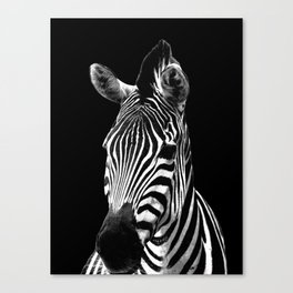 Zebra Black Canvas Print