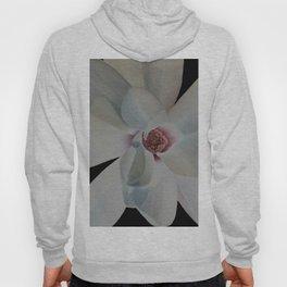 pastel flower Hoody