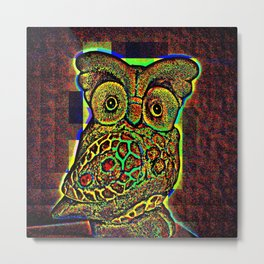 Owls views Metal Print
