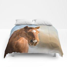 Brown Horse Winter Sky Comforters