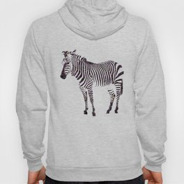 year of the horse: part 1 Hoody