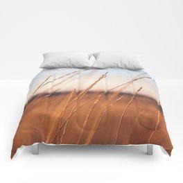 Fall Sunset Photography Print Comforters