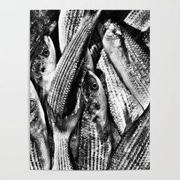 Italian Market Fish Poster