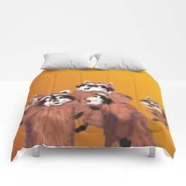 Raccoon Series: Discussion Comforters