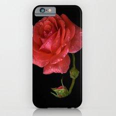 For Rose iPhone 6s Slim Case
