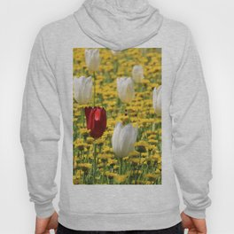 tulips in a field of daisies Hoody