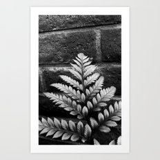 Nature & Brick Art Print
