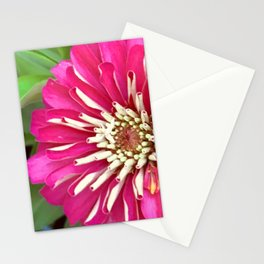 Breathtakingly Bright Pink Petunia Flower Close-Up Stationery Cards