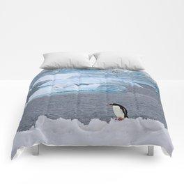 Gentoo Penguin in Front of Icebergs Comforters
