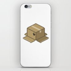 This End Up iPhone & iPod Skin