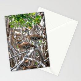 Chiriria Stationery Cards
