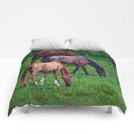 Grazing Horses Comforters