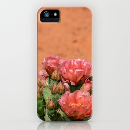 Cacti in Bloom - 5 iPhone Case