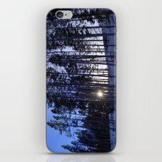 Light Through the Aspens iPhone & iPod Skin